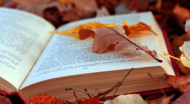5 лучших книг, которые нужно читать осенью