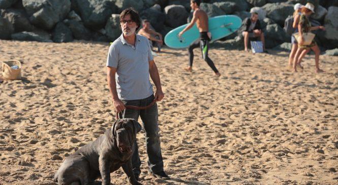 Премьера трейлера комедии «Мой пес идиот» с Шарлоттой Генсбур
